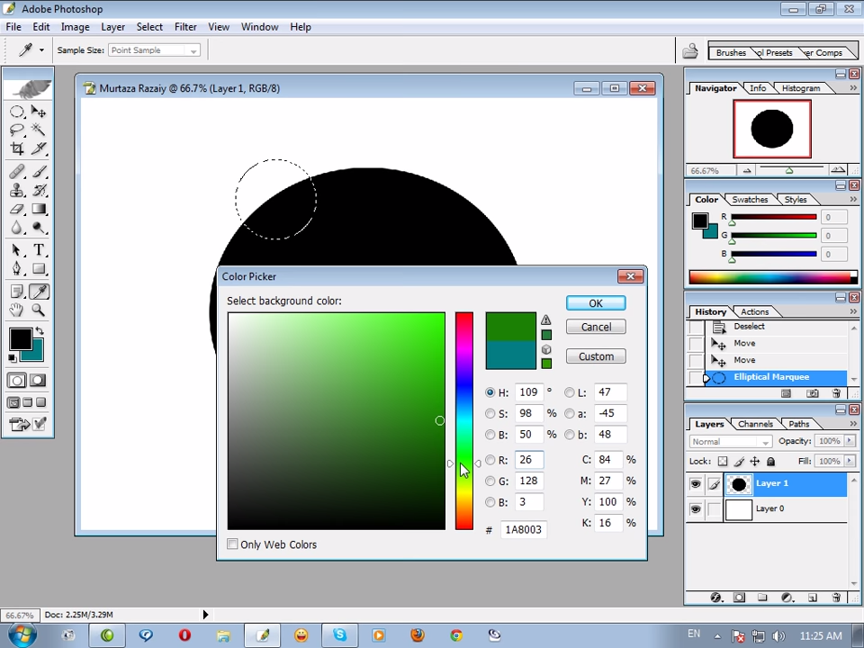 Adobe Photoshop CS for Windows Color Picker (2003)