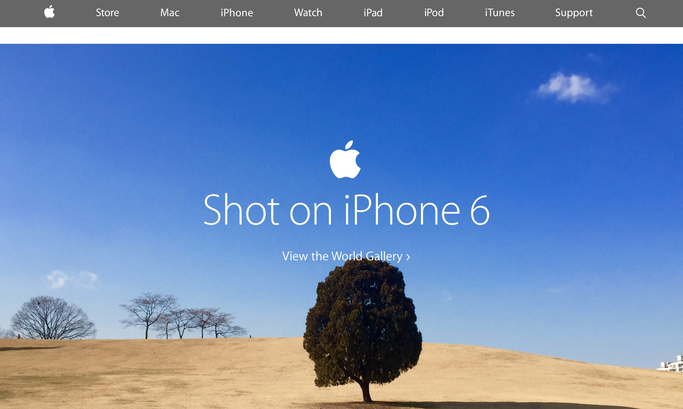 Homepage with photo taken on the iPhone 6 (2015)
