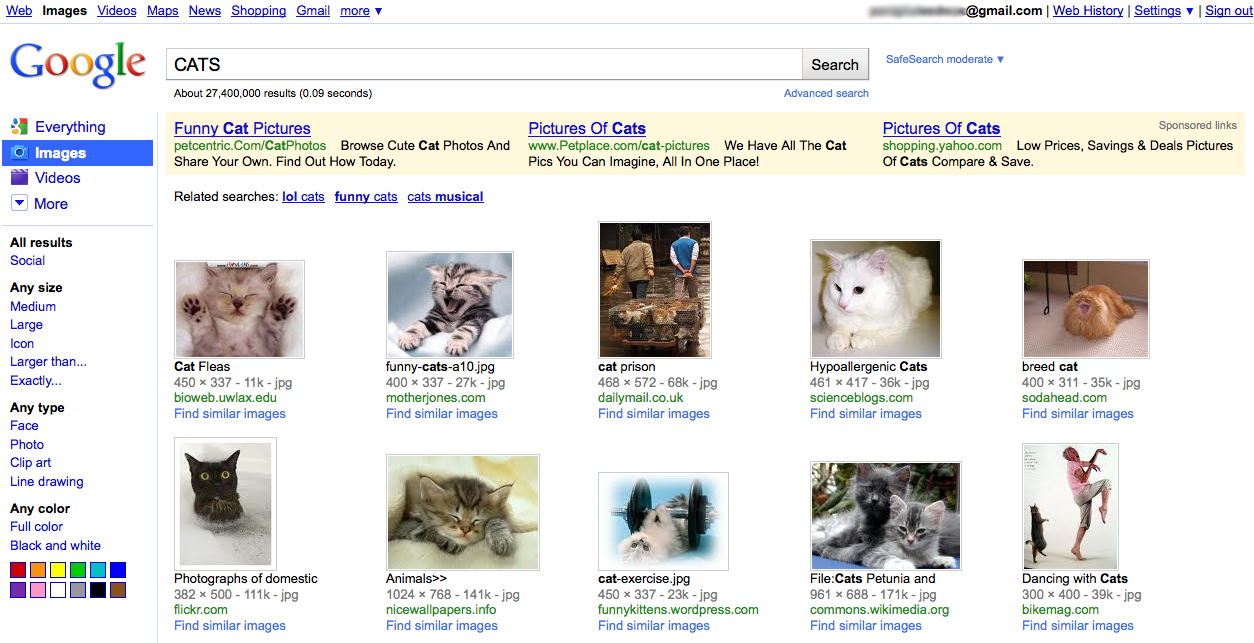 Google Image Search results with sidebar (2010)