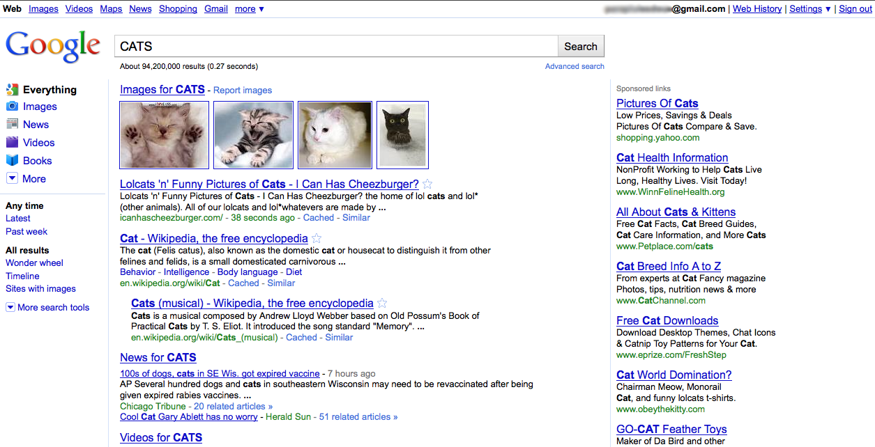Google search results with sidebar (2010)